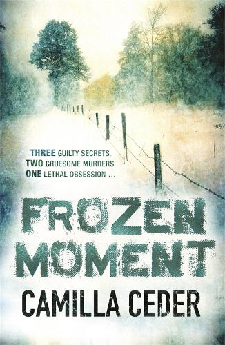 Frozen Moment: 'A good psychological crime novel that will appeal to fans of Wallander and Stieg Larsson' CHOICE (Paperback)