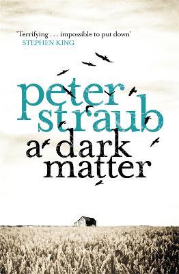A Dark Matter (Paperback)