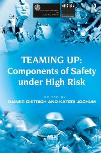 Teaming Up: Components of Safety Under High Risk (Hardback)