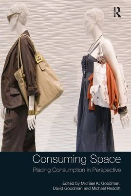 Consuming Space: Placing Consumption in Perspective (Hardback)