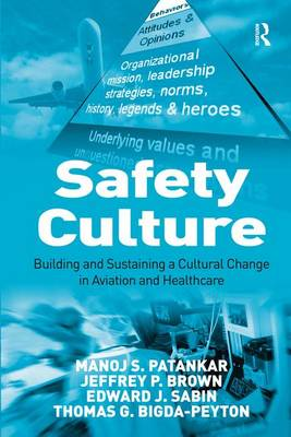 Safety Culture: Building and Sustaining a Cultural Change in Aviation and Healthcare (Hardback)