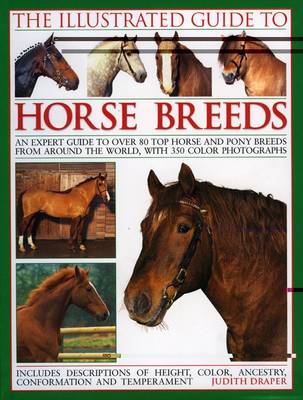 The Illustrated Guide to Horse Breeds: A Comprehensive Visual Guide to the Horses and Ponies of the World, with Over 300 Colour Photographs (Paperback)