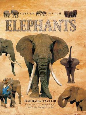 Elephants (Hardback)