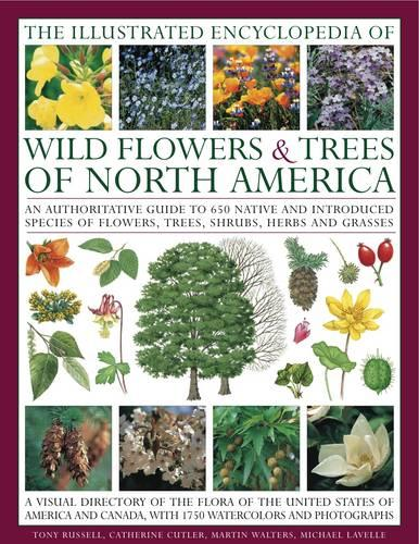 The Illustrated Encyclopedia of Wild Flowers & Trees of North America: an Authoritative Guide to 650 Species of Flowers, Trees, Shrubs, Herbs and Grasses, with 1750 Watercolours, Photographs and Maps (Hardback)