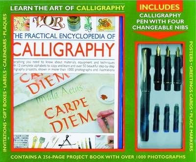 Learn the Art of Calligraphy (Paperback)