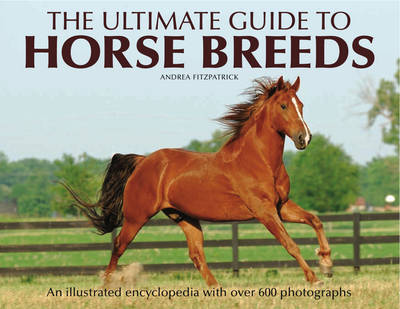 The Ultimate Guide to Horse Breeds: An Illustrated Encyclopedia with Over 600 Photographs (Hardback)