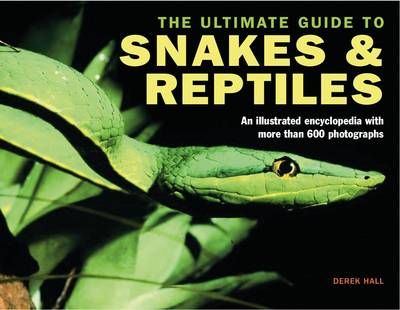 Ultimate Guide to Snakes and Reptiles (Hardback)