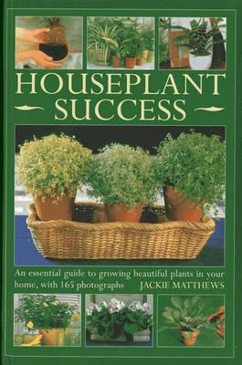 Houseplant Success (Hardback)