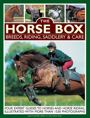 Horse Box: Breeds, Riding, Saddlery & Care (Paperback)