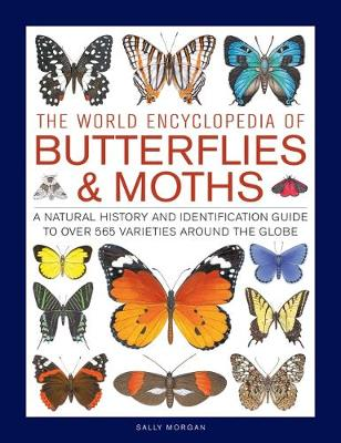 Butterflies & Moths, The World Encyclopedia of: A natural history and identification guide to over 565 varieties around the globe (Hardback)