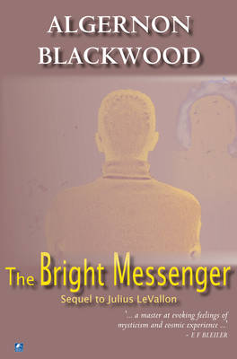 The Bright Messenger (Paperback)