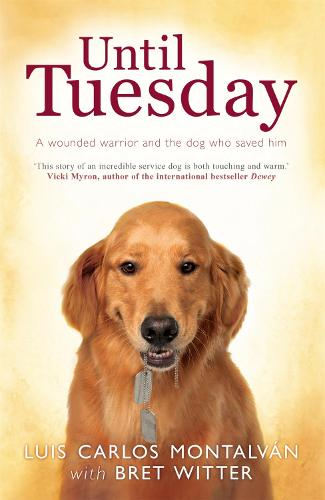 Until Tuesday (Paperback)