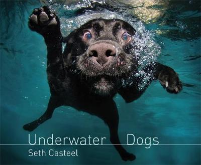 Underwater Dogs (Hardback)