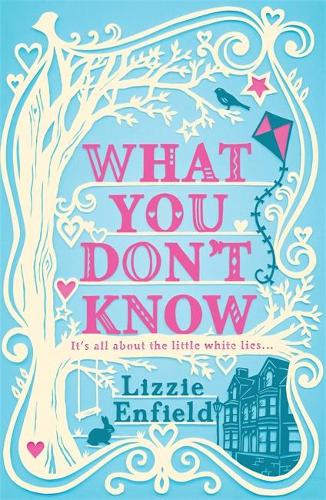 What You Don't Know: A witty tale of marriage and temptation (Paperback)