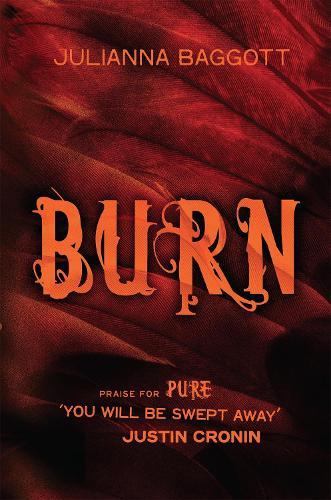 Burn (Hardback)