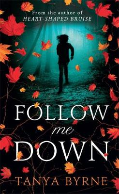Follow Me Down (Hardback)