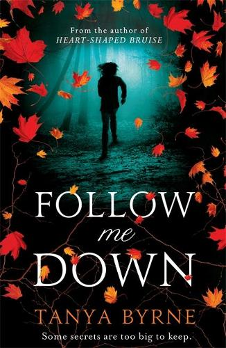 Follow Me Down (Paperback)