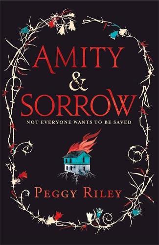Amity & Sorrow (Hardback)