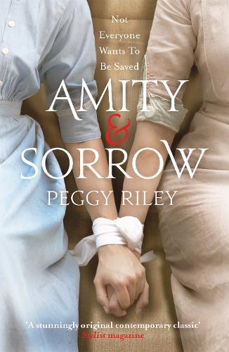 Amity & Sorrow (Paperback)