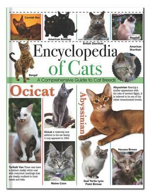 Encyclopedia of Cats: Encyclopedia Omnibus - 128pp Omnibus (Hardback)