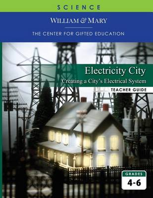Electricity City: Designing an Electrical System (Paperback)