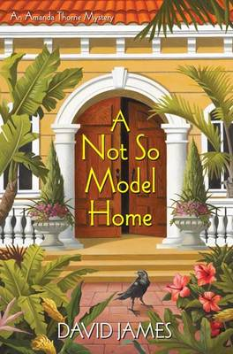 A Not So Model Home: An Amanda Thorne Mystery (Hardback)