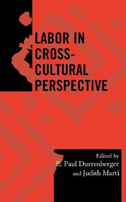 Labor in Cross-Cultural Perspective - Society for Economic Anthropology Monograph Series 23 (Hardback)