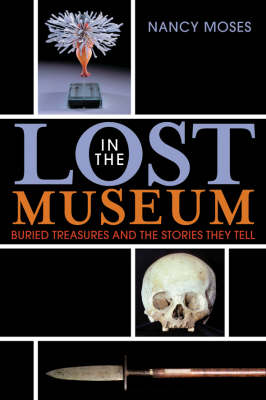 Lost in the Museum: Buried Treasures and the Stories They Tell (Paperback)