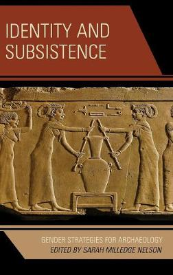 Identity and Subsistence: Gender Strategies for Archaeology - Gender and Archaeology (Hardback)