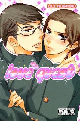 Love Quest (Paperback)