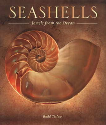 Seashells: Jewels from the Ocean (Hardback)