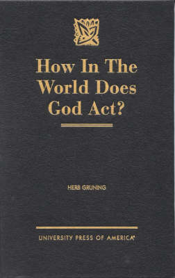How in the World Does God Act? (Hardback)