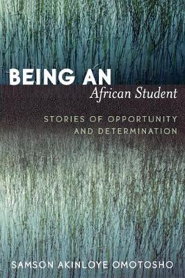 Being an African Student: Stories of Opportunity and Determination (Paperback)