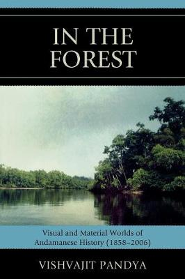 In the Forest: Visual and Material Worlds of Andamanese History (1858-2006) (Paperback)