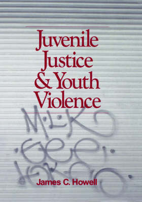 Juvenile Justice and Youth Violence (Hardback)