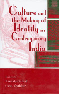 Culture and the Making of Identity in Contemporary India (Hardback)