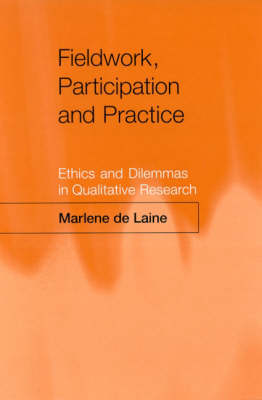 Fieldwork, Participation and Practice: Ethics and Dilemmas in Qualitative Research (Hardback)