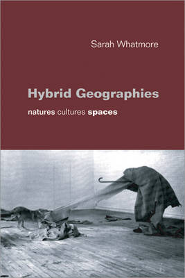 Hybrid Geographies: Natures Cultures Spaces (Paperback)