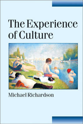 The Experience of Culture - Published in association with Theory, Culture & Society (Hardback)