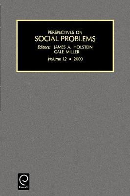 Perspectives on Social Problems - Perspectives on Social Problems 12 (Paperback)