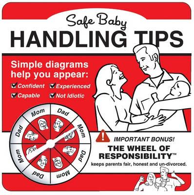 Safe Baby Handling Tips (Paperback)