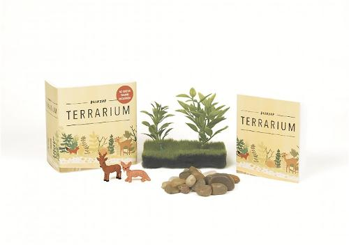 Desktop Terrarium: No Green Thumb Required!