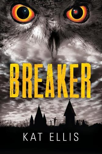 Breaker (Paperback)
