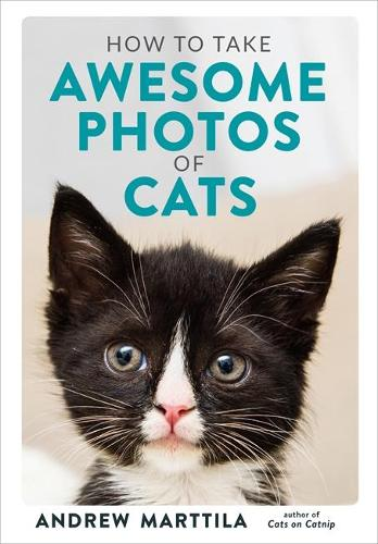 How to Take Awesome Photos of Cats (Hardback)