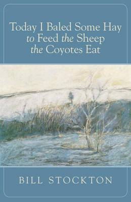 Today I Baled Some Hay to Feed the Sheep the Coyotes Eat (Paperback)