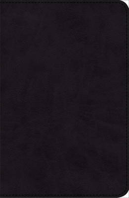 KJV Pray the Scriptures Bible Black Duravella (Leather / fine binding)