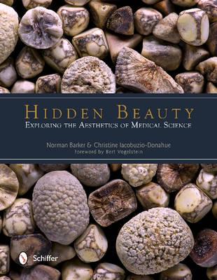 Hidden Beauty: Exploring the Aesthetics of Medical Science (Hardback)