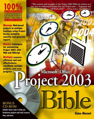 Microsoft Office Project 2003 Bible (Paperback)