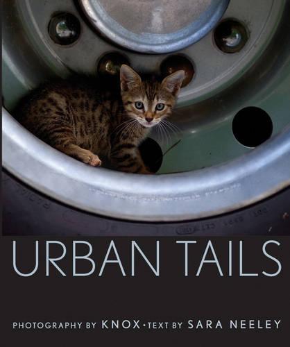 Urban Tails (Hardback)