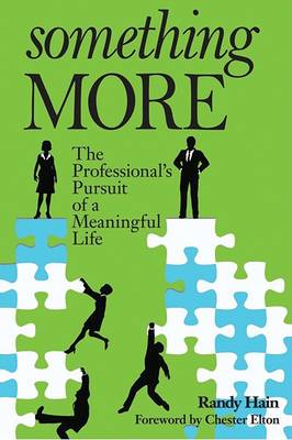 Something More: The Professional's Pursuit of a Meaningful Life (Paperback)